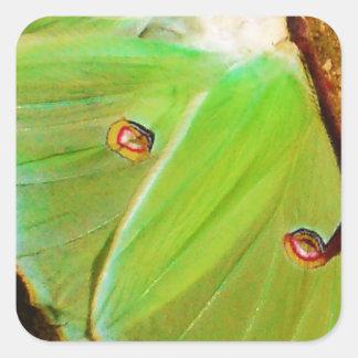 緑のルナガ スクエアシール