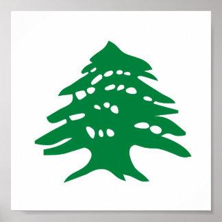 緑のレバノンのヒマラヤスギ木 ポスター