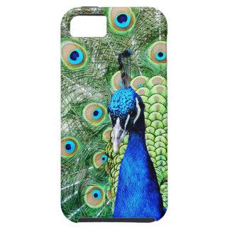 緑の孔雀 iPhone SE/5/5s ケース