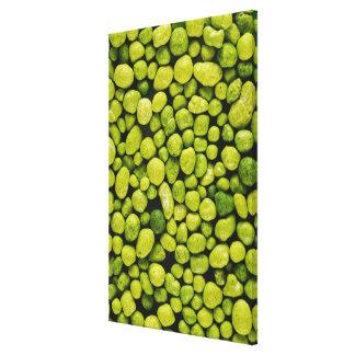 緑の小石のクローズアップ キャンバスプリント