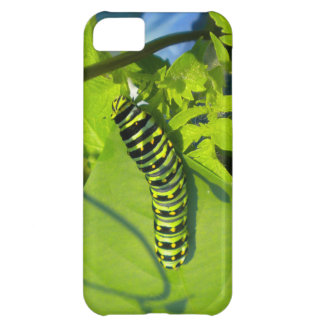 緑の幼虫のiPhone 5の箱の緑 iPhone5Cケース