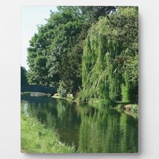 緑の明るい春日の緑の木の川の歩行 フォトプラーク