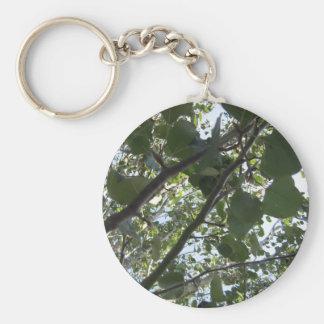 緑の木の写真撮影 キーホルダー