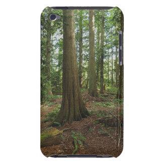 緑の森林森林木の自然の写真 Case-Mate iPod TOUCH ケース