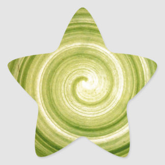 緑の渦巻 星シール