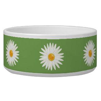 緑の白いデイジーの花