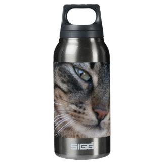 緑の瞳を持つ好奇心にあふれる虎猫猫 断熱ウォーターボトル