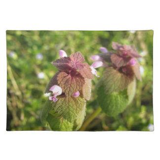 緑の紫色の死イラクサ(Lamiumのpurpureum) ランチョンマット