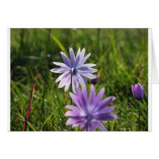 緑の背景の紫色のデイジーの花 カード