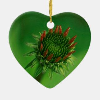 緑の背景のEchinaceaのConeflowerの芽 セラミックオーナメント