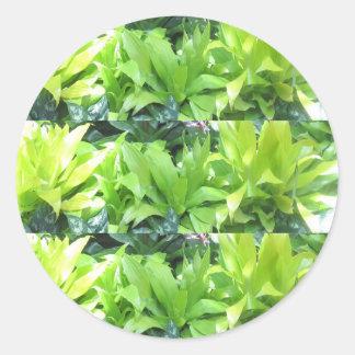 緑の花園: エレガントな春の花 ラウンドシール