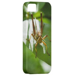 緑の葉のバッタ iPhone SE/5/5s ケース