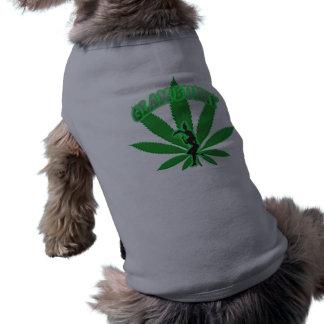 緑の葉のバニーのロゴ ペット服