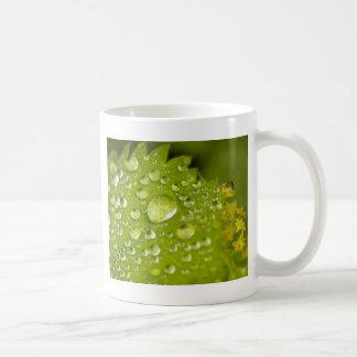 緑の葉の雨しぶき コーヒーマグカップ