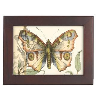 緑の葉上のタンデム蝶 ジュエリーボックス