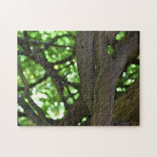 緑の藤のパーゴラの木の自然の写真撮影 ジグソーパズル