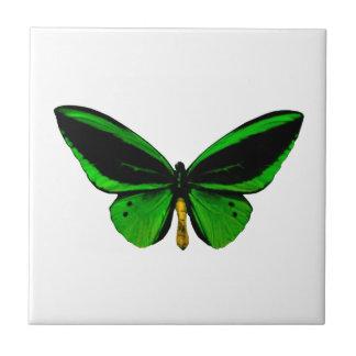 緑の蝶タイル タイル