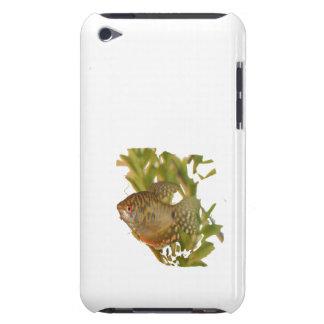 緑の金ゴールドのグラミーの淡水魚 Case-Mate iPod TOUCH ケース