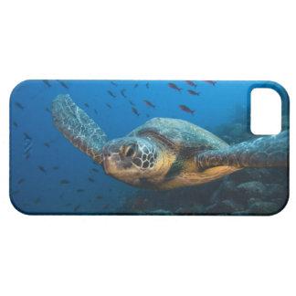 (緑の)カメ(Cheloniaのagassizi)を黒くして下さい iPhone SE/5/5s ケース