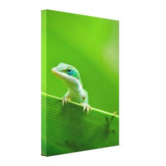 緑のAnoleのトカゲの遭遇の芸術の写真撮影 キャンバスプリント