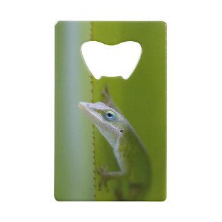 緑のanoleはarborealトカゲです クレジットカード栓抜き