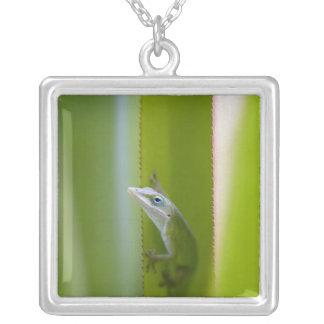 緑のanoleはarborealトカゲです シルバープレートネックレス