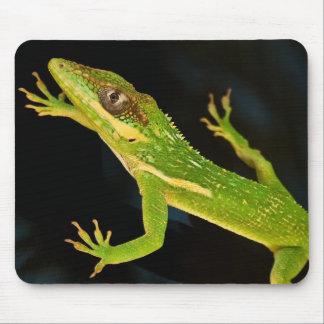 緑のAnole マウスパッド