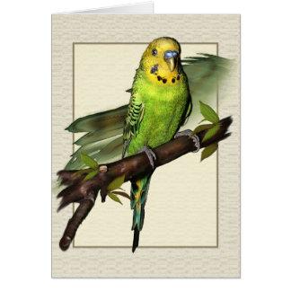 緑のBudgieの芸術の挨拶状 カード