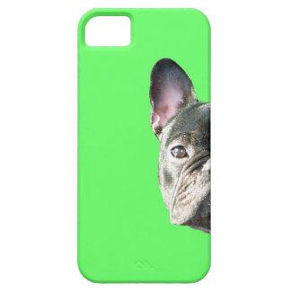 」緑のIphone 5の場合をかいま見ているフレンチ・ブルドッグ「 iPhone SE/5/5s ケース