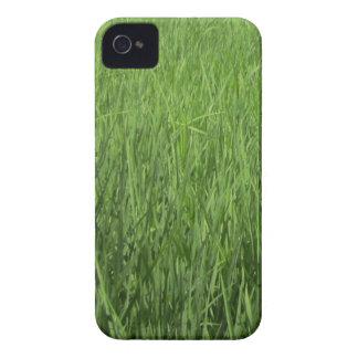 緑のpadiの分野 Case-Mate iPhone 4 ケース