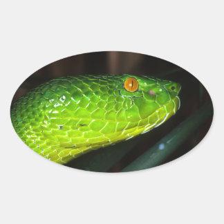 緑のStejnegerのピット毒蛇のヘビ 楕円形シール