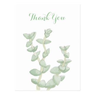 緑のSucculentは感謝していしています ポストカード