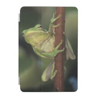 緑のTreefrogのcinereaアマガエル属黄色の大人 iPad Miniカバー