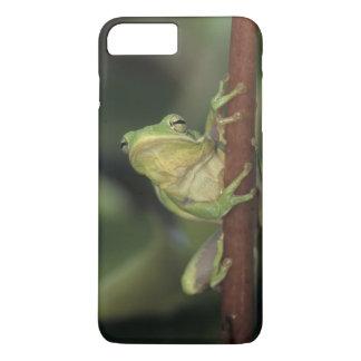 緑のTreefrogのcinereaアマガエル属黄色の大人 iPhone 8 Plus/7 Plusケース