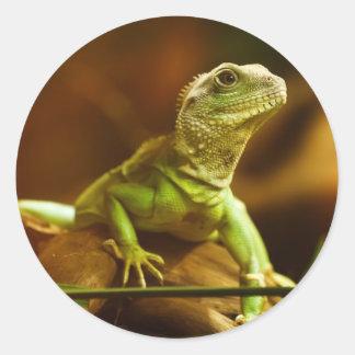 緑トカゲのステッカー ラウンドシール