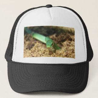 緑ヘビの帽子 キャップ