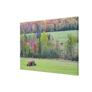緑分野の干し草ベールが付いているトラクターとの キャンバスプリント