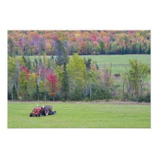 緑分野の干し草ベールが付いているトラクターとの フォトプリント