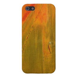 緑及びオレンジ石造りのiPhone 5の光沢のある終わりの場合 iPhone 5 ケース