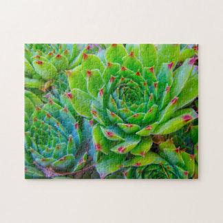 緑植物のパズル ジグソーパズル