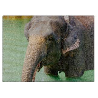 緑水、動物の写真のアジアゾウ カッティングボード