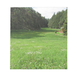緑草原との高山の景色 ノートパッド