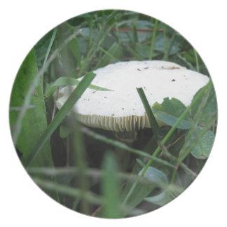 緑草原の白いきのこ プレート