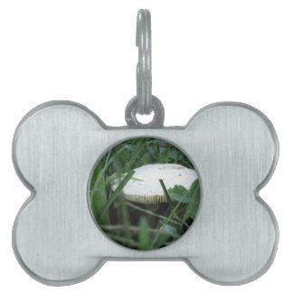 緑草原の白いきのこ ペットネームタグ