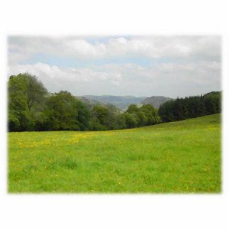 緑草原。 田舎景色。 カスタム 写真彫刻(台付き)