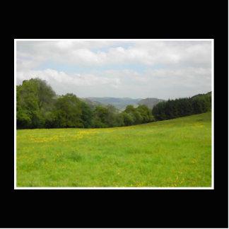 緑草原。 田舎景色 写真彫刻オーナメント