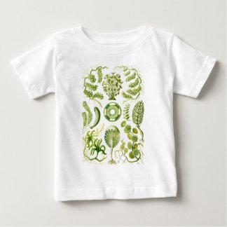 緑藻類 ベビーTシャツ