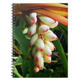 緑豊かでエキゾチックな熱帯花 ノートブック