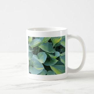 緑豊かな緑のhostAの植物の葉 コーヒーマグカップ
