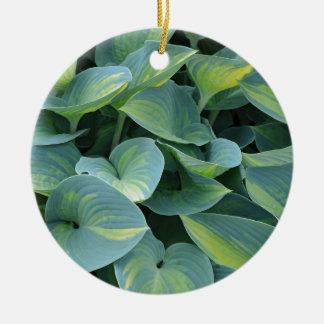 緑豊かな緑のhostAの植物の葉 セラミックオーナメント